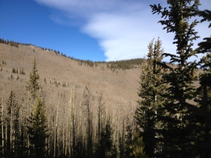 Aspen Grove to the other mountain