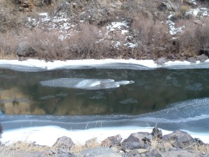 Ice forming on the Platte river