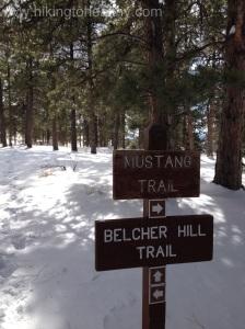 Mustange 2 trail break