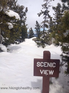 Snow is to the top of the Scenic view sign