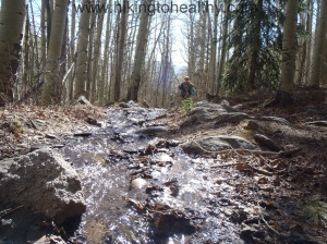 This is actually the trail with our own little creek occasionally