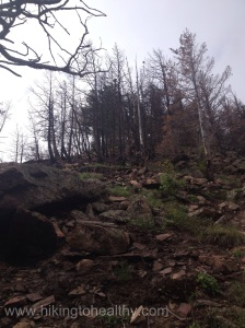 Where the fire came over the ridge and close to the summit