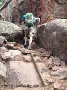 up Fern Canyon
