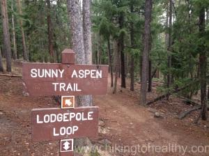 Ldgepole to Sunny Aspen