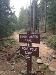 Sunny Aspen Trail  to the Lodgepole loop