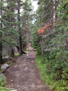 Trail Conditions along Long Lake to Isabelle Lake