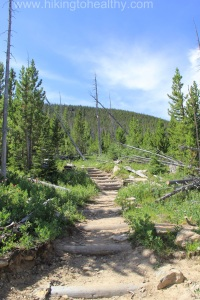 Trail Conditions through the burn scar