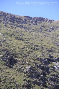 This is the trail going up to Summit Lake I tried to zoom up as there as people ascending
