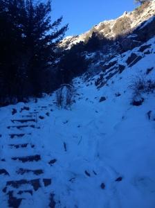 Climbing up Plymouth Creek Trail