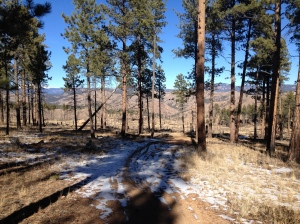 Skipper trail conditions to Strawberry Jack