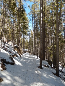 Bergen Peak Trail conditions