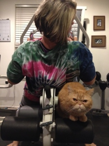 Nugget getting his workout in