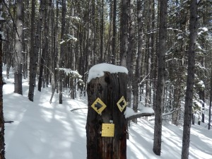 The trail marker for the last mile to the Hallelujah hut