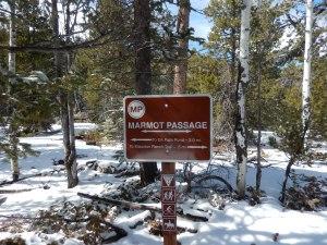 marmot passage sign