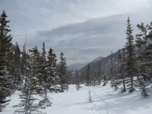 Trail Conditions going towards Emerald Lake