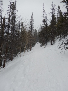 Trail Conditions to Nymph