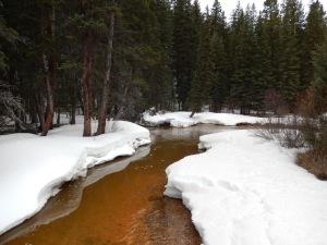 crossing geneva creek