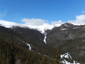 Hidden Valley to trail ridge road