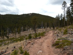Staunton Ranch from Border Line