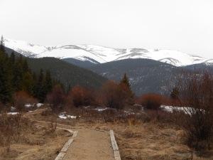 Trail in teh beginning