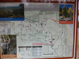 Picking our Route