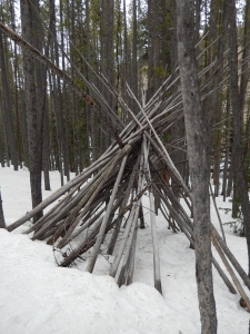 tree tepee