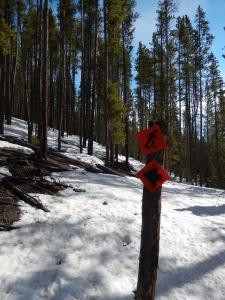 Snowshoe route