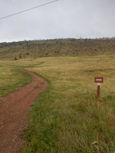 The trailhead across Rooney Road
