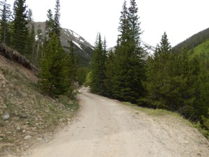 Grizzly gulch road