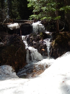 There were lots of snow melt stream and waterfalls along the path to drown out the traffic noise