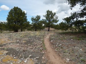 Trail loop conditions