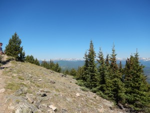 Above the tree line