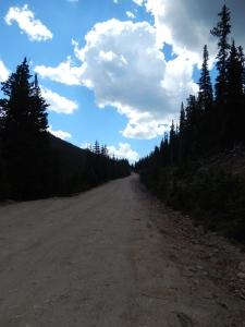 Squaw Mt. Access Road
