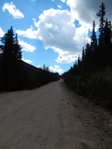 Squaw Mt. Access Road