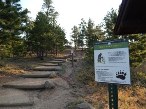 Start of the trail
